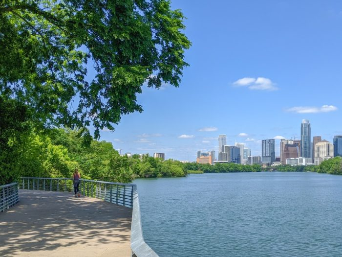 Top 5 Places to Walk Your Dogs Near Our Austin Student Apartments